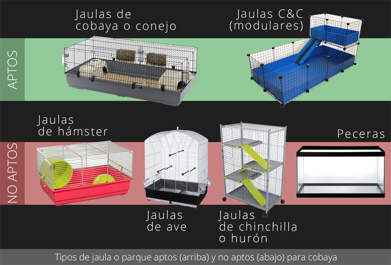 Tipos de jaula o parque aptos y no aptos