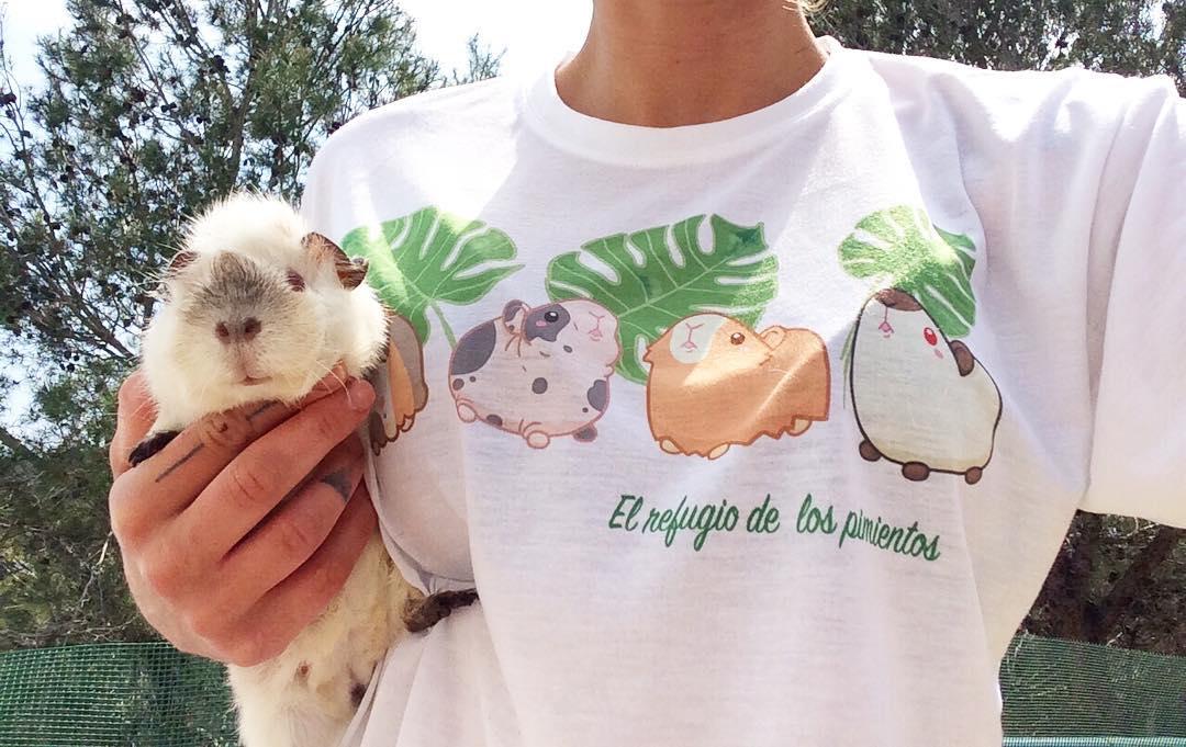 Cobaya y camiseta del refugio