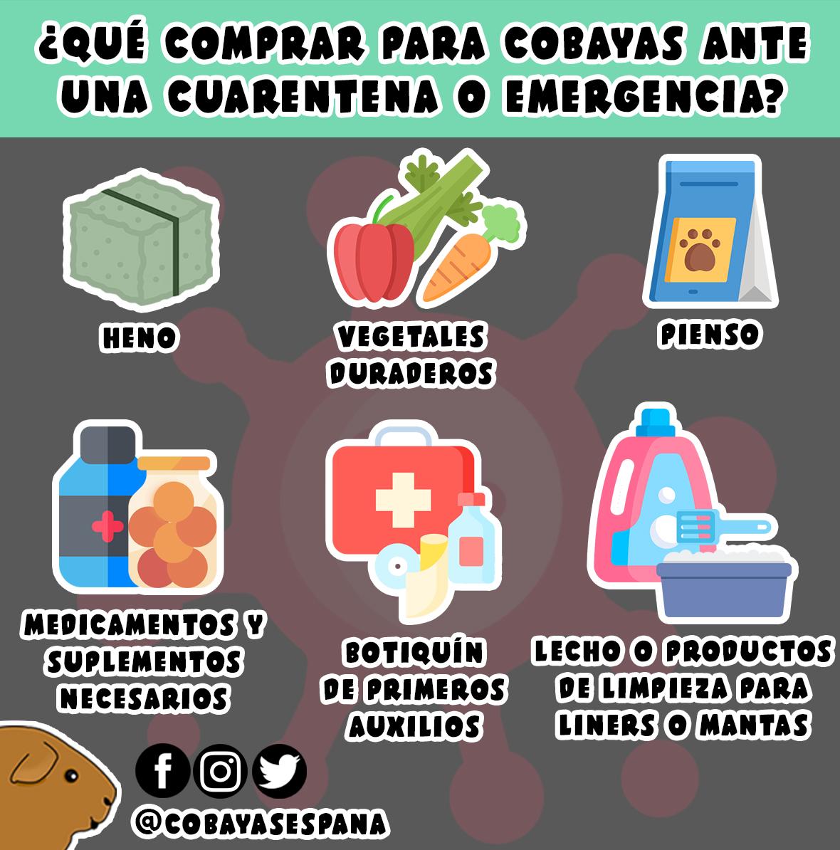 Infografía de compras para emergencias