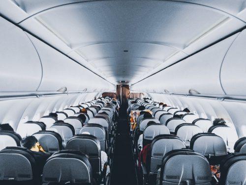 Cabina de aerolínea que admite cobayas