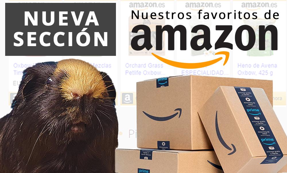 Favoritos de Amazon